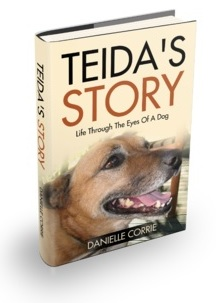 Teida Front Cover 1